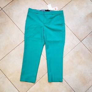 Banana Republic Green Hampton Trouser Pant Size 8P